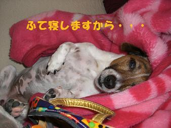 2009_0529_132036-CIMG2427.jpg