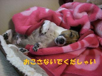 2009_0529_132225-CIMG2429.jpg