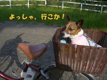 2009_0601_163107-CIMG2442.jpg