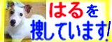 200904_13_41_c0075641_1304369.jpg
