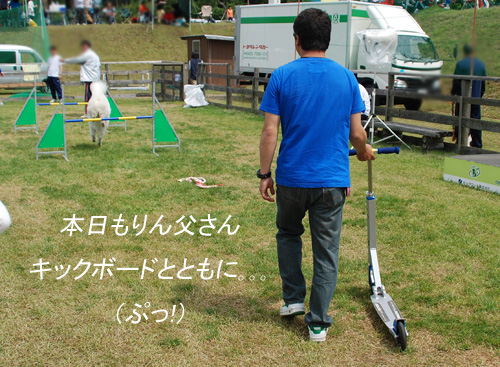 DSC_2811.jpg