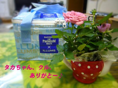 P1030931.jpg