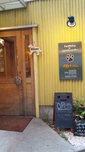 DOGカフェ・セルフシャンプー