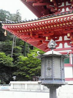 takahatahudou200907121155000a.jpg