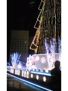 20081126_2.jpg