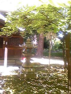 2009081402.jpg