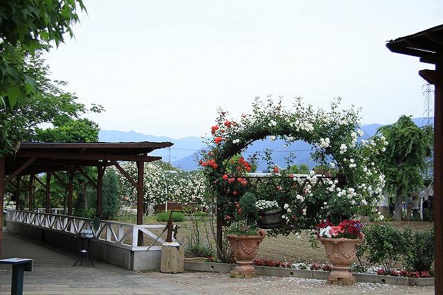 IMG_7976ハーブ庭園