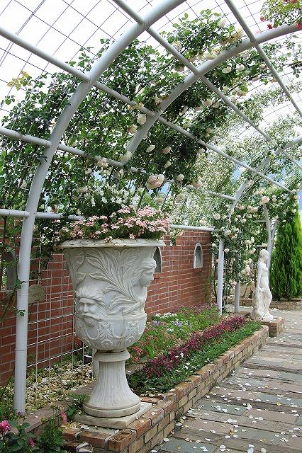IMG_7988ハーブ庭園