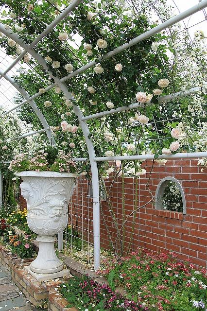 IMG_7992ハーブ庭園