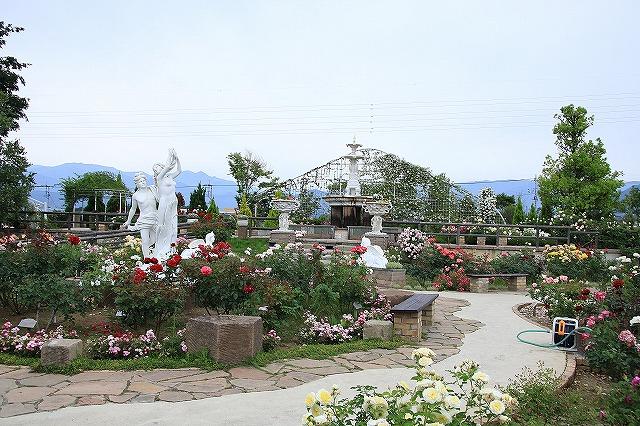 IMG_7996ハーブ庭園
