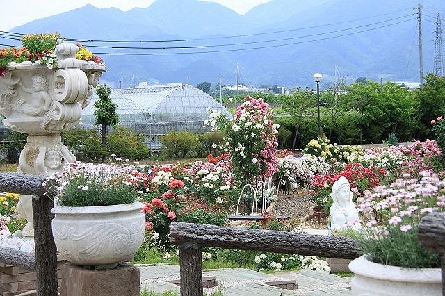 IMG_8060ハーブ庭園