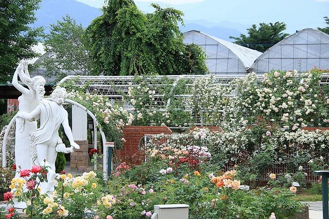 IMG_8061ハーブ庭園