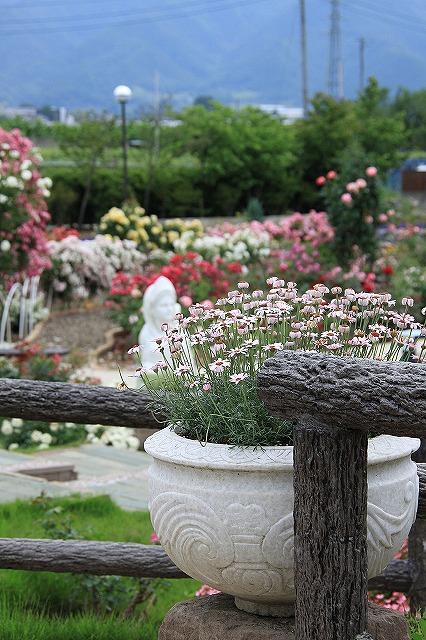 IMG_8064ハーブ庭園