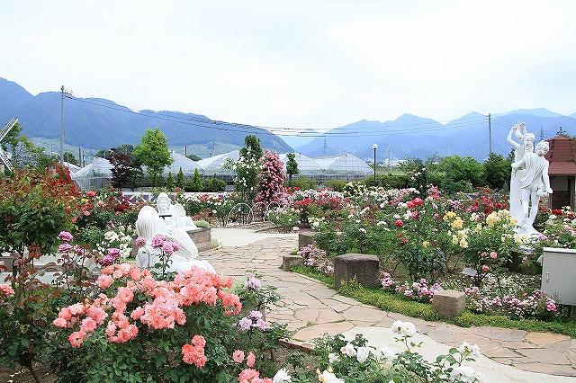IMG_8066ハーブ庭園