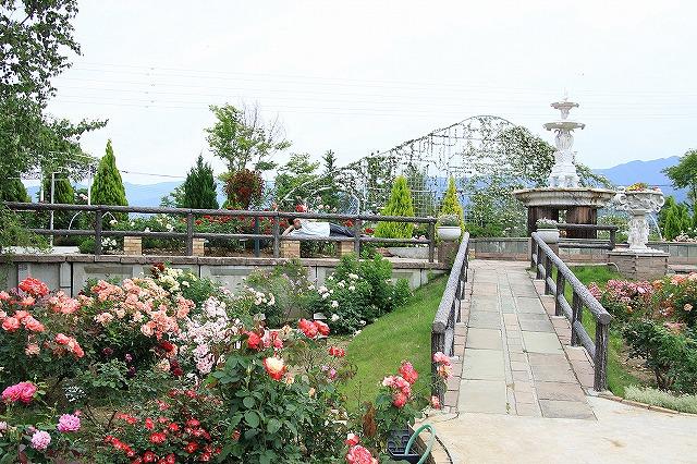 IMG_8072ハーブ庭園
