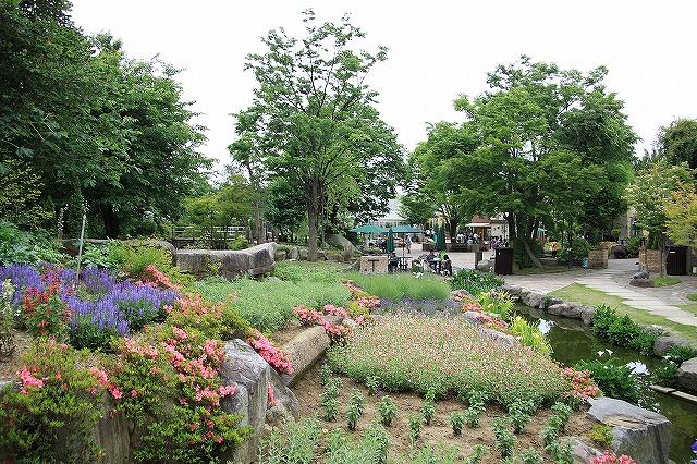 IMG_8089ハーブ庭園