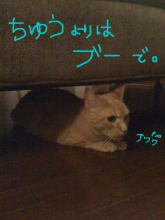 kaminari3_convert_20090824063801.jpg