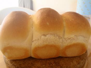 ミニ食パン①