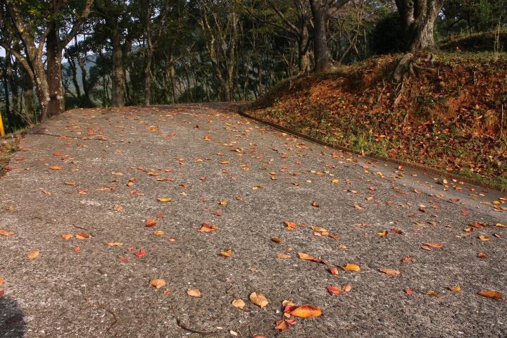 金立公園20081004-02