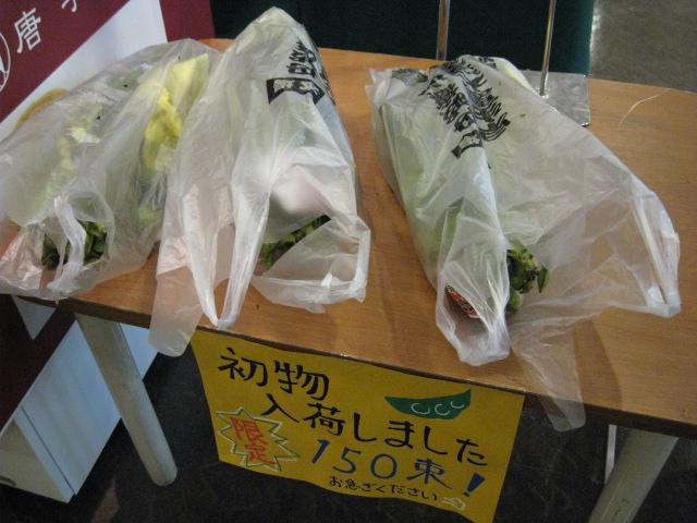 黒豆枝豆20081005-02
