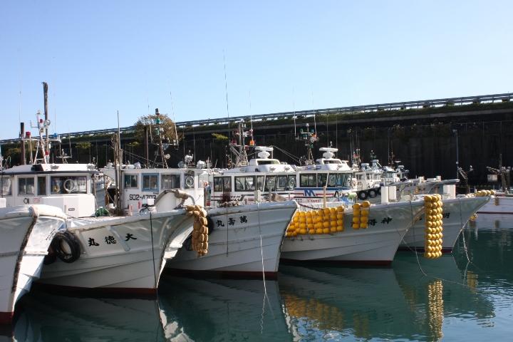 由比漁港20081122-02