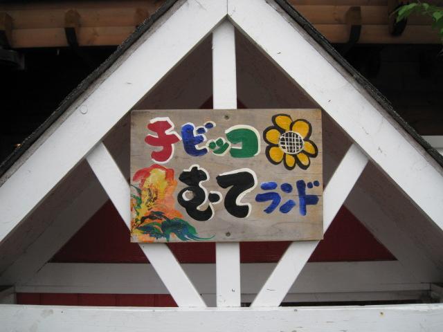 無鉄砲20090607-05