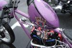 2006_06110005.jpg