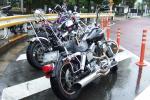 2006_06110027.jpg