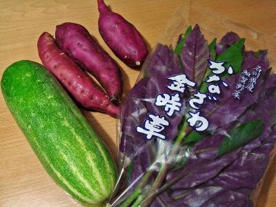 2008 09 15加賀野菜