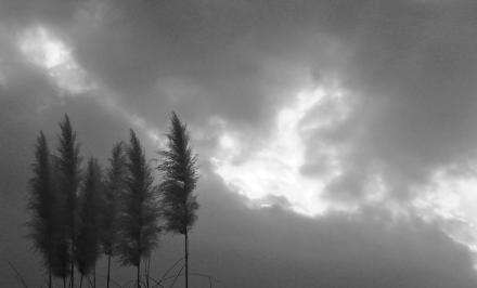 夕焼けの空 モノクロ