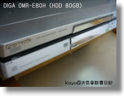 DMR-E80H