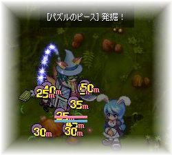 060318popuri.jpg