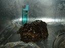 換気扇クリーニング(油)