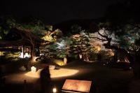 高台寺庭園2