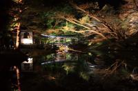 高台寺庭園3