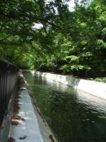 琵琶湖疎水2
