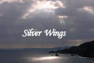 Silver Wings TITLE