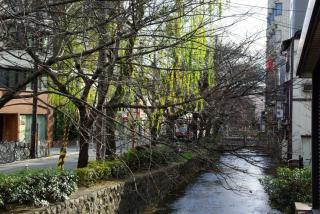 高瀬川・・・
