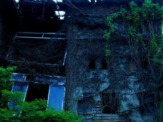 朽ち果てた建物