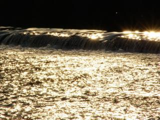 桂川にキラキラと・・・