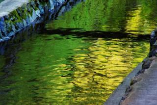 黄金に輝く水