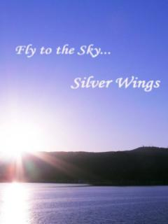 Silver Wings-Fly to the Sky