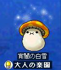 kinoko2061007.jpg
