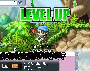 Maple000065.jpg