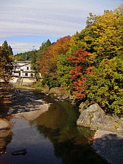 自由の森近くの川