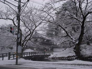 雪 弘前 2007年12月3日 午前10時ごろ