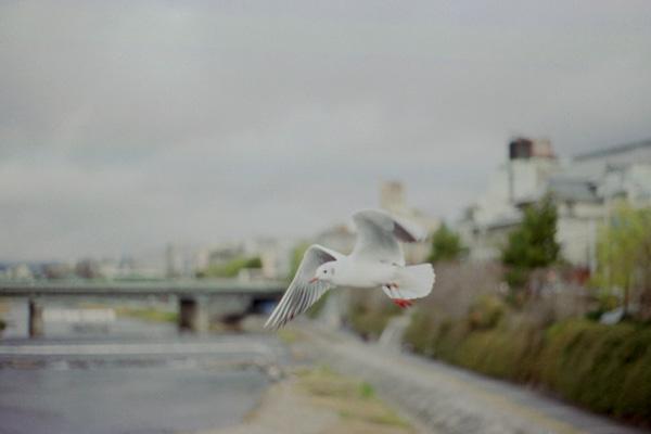 blog0381.jpg