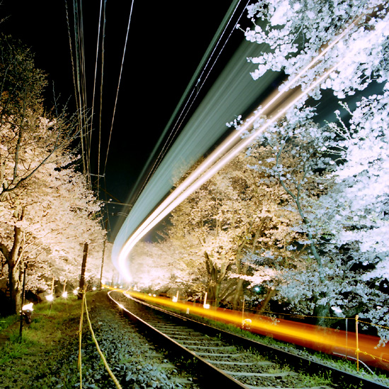 鳴滝桜トンネル/京福電鉄北野線
