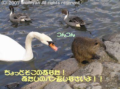 あたしのパン返しなさいよ!!