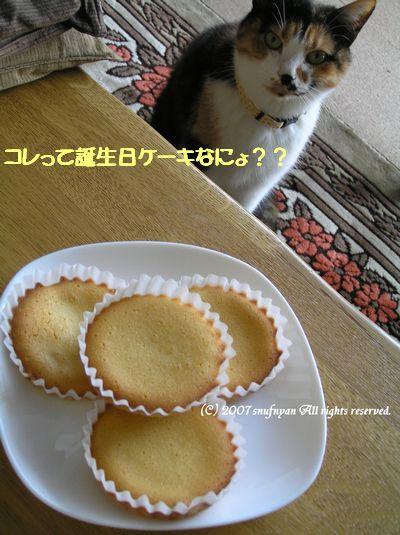 コレって誕生日ケーキなにょ??